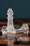 το σκάκι αντιμετωπίζει μοιραίο Στοκ φωτογραφίες με δικαίωμα ελεύθερης χρήσης