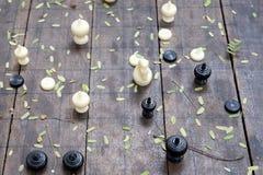 Το σκάκι Στοκ Εικόνες