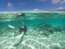 Το σκάφανδρο προσώπων βουτά στις νήσους Rarotonga Κουκ Στοκ εικόνες με δικαίωμα ελεύθερης χρήσης