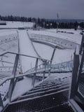 το σκι άλματος Στοκ εικόνες με δικαίωμα ελεύθερης χρήσης