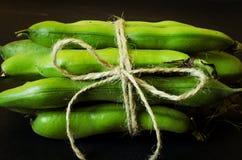 Το σκοινί έδεσε τα πράσινα φασόλια Στοκ Εικόνα