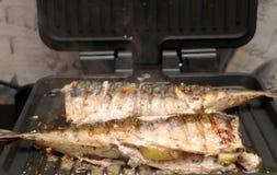 Το σκουμπρί ψήνεται σε μια ηλεκτρική σχάρα Ψημένα στη σχάρα ψάρια με το λεμόνι και τη σαλάτα στοκ φωτογραφία