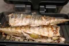Το σκουμπρί ψήνεται σε μια ηλεκτρική σχάρα Ψημένα στη σχάρα ψάρια με το λεμόνι και τη σαλάτα στοκ εικόνα με δικαίωμα ελεύθερης χρήσης