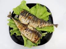 Το σκουμπρί ψήνεται σε μια ηλεκτρική σχάρα Ψημένα στη σχάρα ψάρια με το λεμόνι και τη σαλάτα στοκ εικόνα