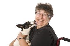 Το σκυλάκι φιλά τα θεραπεύοντας φιλιά στοκ εικόνες