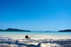 Το σκυλί βρίσκεται στην παραλία στη συμπαθητική ηλιόλουστη θερινή ημέρα Koh νησί Rong Sanloem, Saracen κόλπος Καμπότζη, Ασία στοκ φωτογραφία