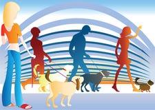 το σκυλί εμφανίζει Στοκ Φωτογραφίες