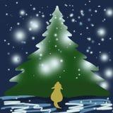 Το σκυλί εξετάζει ένα μεγάλο χριστουγεννιάτικο δέντρο Στοκ Φωτογραφίες