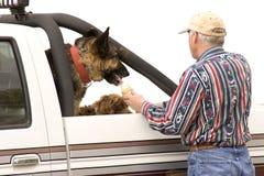 το σκυλί μεταχειρίζετα&iot Στοκ εικόνες με δικαίωμα ελεύθερης χρήσης