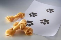 το σκυλί μεταχειρίζετα&iot Στοκ Φωτογραφία