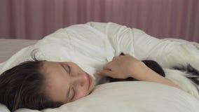 Το σκυλί Papillon ξυπνά το κορίτσι εφήβων στο βίντεο μήκους σε πόδηα αποθεμάτων κρεβατιών απόθεμα βίντεο