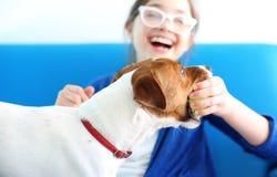 Το σκυλάκι έχει τη σφαίρα Στοκ Φωτογραφίες