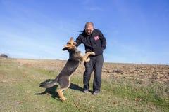Το σκυλί δαγκώνει το χέρι Στοκ Εικόνες