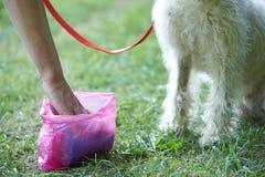 Το σκυλί καθαρίσματος ιδιοκτητών βρωμίζει με Pooper Scooper Στοκ Εικόνες