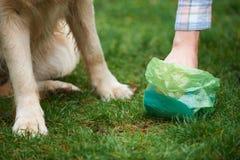 Το σκυλί καθαρίσματος ιδιοκτητών βρωμίζει με Pooper Scooper Στοκ Εικόνα