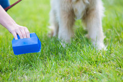 Το σκυλί καθαρίσματος ιδιοκτητών βρωμίζει με Pooper Scooper Στοκ εικόνες με δικαίωμα ελεύθερης χρήσης