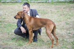 Το σκυλί παρουσιάζει τον ιδιοκτήτη του σκυλιού Στοκ Εικόνες
