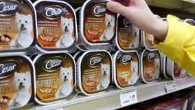 Το σκυλί Cesar αγοράς γυναικών έψησε το κοτόπουλο στη σχάρα και η καπνισμένη γεύση αυγών μπέϊκον μπορεί απόθεμα βίντεο