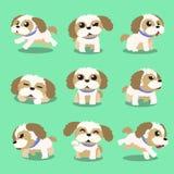 Το σκυλί tzu χαρακτήρα κινουμένων σχεδίων shih θέτει Στοκ φωτογραφία με δικαίωμα ελεύθερης χρήσης