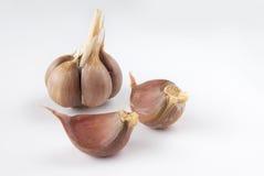 το σκόρδο απομόνωσε ακα&tau Στοκ Εικόνες