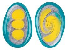 το σμάλτο ανάμιξε τα πολύχρωμα δείγματα στιλβωτικής ουσίας καρφιών Στοκ Φωτογραφίες