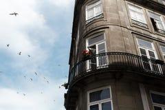 Το σπίτι έχει ένα μπαλκόνι στο οποίο τα λουλούδια αυξάνονται, στην πόλη του Πόρτο, την Πορτογαλία Στοκ εικόνες με δικαίωμα ελεύθερης χρήσης