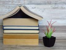 Το σπίτι διαμόρφωσε το σωρό των παλαιών βιβλίων, πράσινες εγκαταστάσεις μαύρο flowerpot στο λευκαμένο δρύινο ράφι στοκ φωτογραφία