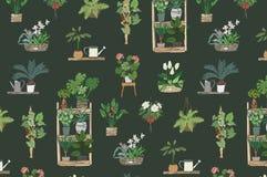 Το σπίτι φυτεύει το σχέδιο Στοκ Εικόνες