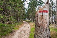 Το σπασμένο ίχνος βουνών είναι επικίνδυνο Στοκ Εικόνες