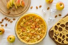 Το σπιτικό μήλο αυξήθηκε ξινός Στοκ Εικόνες