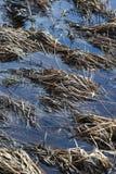 Το στέγνωμα της ροής του νερού Στοκ Φωτογραφία