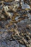 Το στέγνωμα της ροής του νερού Στοκ εικόνες με δικαίωμα ελεύθερης χρήσης