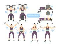Το στήθος workout έθεσε ελεύθερη απεικόνιση δικαιώματος