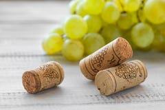 Το σταφύλι και το κρασί βουλώνουν Στοκ εικόνες με δικαίωμα ελεύθερης χρήσης