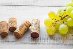 Το σταφύλι και το κρασί βουλώνουν Στοκ Εικόνα