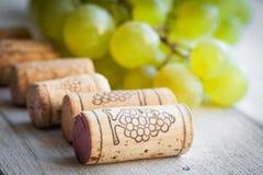 Το σταφύλι και το κρασί βουλώνουν Στοκ εικόνα με δικαίωμα ελεύθερης χρήσης