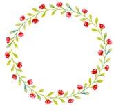Το στεφάνι των μικρών ανοικτό πράσινο φύλλων και των μικρών κόκκινων λουλουδιών διανυσματική απεικόνιση