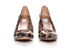 Το στιλέτο υψηλό βάζει τακούνια στα παπούτσια στο ζωικό σχέδιο τυπωμένων υλών, με το υψηλό τακούνι στοκ εικόνες με δικαίωμα ελεύθερης χρήσης