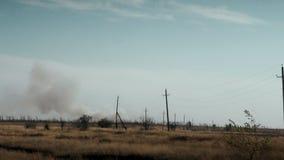 Το στοιχείο της πυρκαγιάς καίγοντας δάσος απόθεμα βίντεο