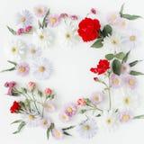 Το στρογγυλό σχέδιο στεφανιών πλαισίων με τα τριαντάφυλλα, ρόδινο λουλούδι βλαστάνει, κλάδοι και φύλλα στο άσπρο υπόβαθρο στοκ εικόνες