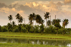 Το συννεφιασμένος και η σκιά του ουρανού στοκ φωτογραφία με δικαίωμα ελεύθερης χρήσης
