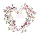Το σχέδιο Watercolor του κερασιού κερασιών ανθίζει άνθη κερασιών, ρόδινα λουλούδια, ευγενείς τόνοι, στο θέμα της άνοιξη, ημέρα μη Στοκ Εικόνα