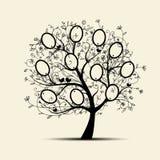 Το σχέδιο οικογενειακών δέντρων, παρεμβάλλει τις φωτογραφίες σας στα πλαίσια Στοκ Εικόνες