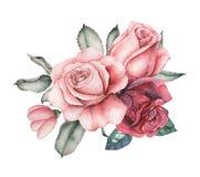 Το σχέδιο πρόσκλησης Watercolor με την ανθοδέσμη του χεριού λουλουδιών χρωμάτισε τις floral συνθέσεις που απομονώθηκαν στο άσπρο  Στοκ φωτογραφίες με δικαίωμα ελεύθερης χρήσης