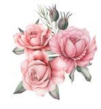 Το σχέδιο πρόσκλησης Watercolor με την ανθοδέσμη του χεριού λουλουδιών χρωμάτισε τις floral συνθέσεις που απομονώθηκαν στο άσπρο  απεικόνιση αποθεμάτων