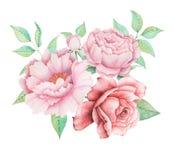 Το σχέδιο πρόσκλησης Watercolor με την ανθοδέσμη του χεριού λουλουδιών χρωμάτισε τις floral συνθέσεις που απομονώθηκαν στο άσπρο  ελεύθερη απεικόνιση δικαιώματος