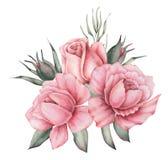 Το σχέδιο πρόσκλησης Watercolor με την ανθοδέσμη του χεριού λουλουδιών χρωμάτισε τις floral συνθέσεις που απομονώθηκαν στο άσπρο  Στοκ Εικόνα