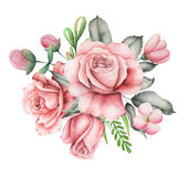 Το σχέδιο πρόσκλησης Watercolor με την ανθοδέσμη του χεριού λουλουδιών χρωμάτισε τις floral συνθέσεις που απομονώθηκαν στο άσπρο  Στοκ Φωτογραφία