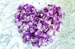 Το σύμβολο της καρδιάς από τα πέταλα αυξήθηκε Στοκ φωτογραφία με δικαίωμα ελεύθερης χρήσης