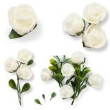 Το σύνολο με το λευκό έκανε τα τριαντάφυλλα και τα φύλλα για το γραφικό σχέδιο που απομονώθηκε στο άσπρο υπόβαθρο Στοκ Εικόνες